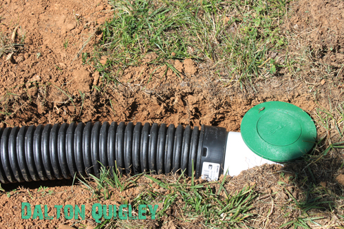 French Drain popup drain French Drain in a Nashville Tn backyard Franklin, Brentwood, Spring Hill, Nolensville, Murfreesboro Drains water problems crawl space water